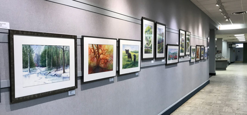 Display of watercolors by Judy Mattson Reed