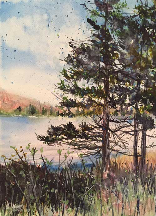 Linda Elmer - Spruce, Lakeside watercolor