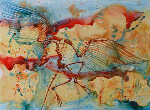 Claudia Giannini - Archeopteryx watercolor